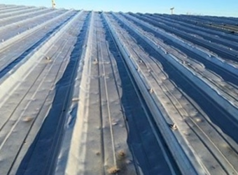 Hail Damage Roofing Contractor